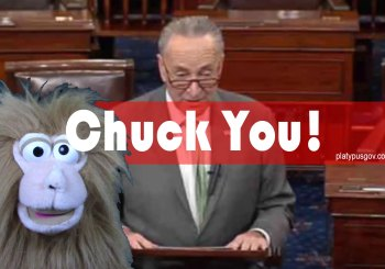 Chuck YOU Mr. Schumer