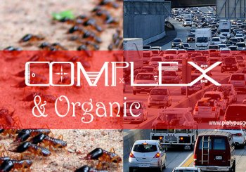 Ants and Cars in traffic, complex and organic