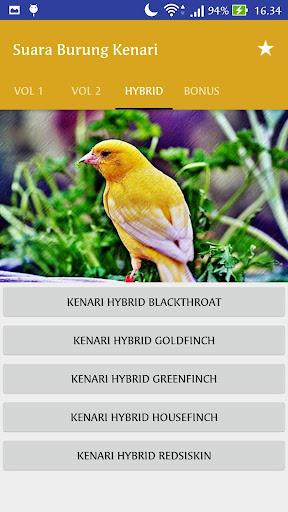 Download Suara Burung Kenari Master : download, suara, burung, kenari, master, Download, Masteran, Suara, Burung, Kenari, Offline, Android, STEPrimo.com