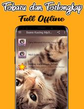Download Suara Kucing : download, suara, kucing, Suara, Kucing, Terbaru, Offline, التطبيقات, على, Google