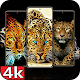Leopards wallpapers HD for PC