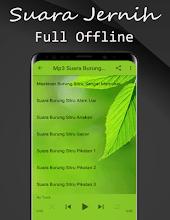 Suara Burung Sirtu Mp3 : suara, burung, sirtu, Suara, Burung, Sirtu, Gacor, Offline, Google