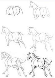 Cara Menggambar Kuda : menggambar, Contoh, Menggambar, 1.0.2, Android
