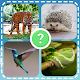 Animals quiz zoo: fish birds mammals insects for PC
