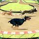 Dog Race Game: New Kids Games 2020 Animal Racing for PC