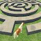 Pony Horse Maze Run Challenge - Free Pony Games for PC