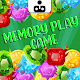 Memory Play Game for PC