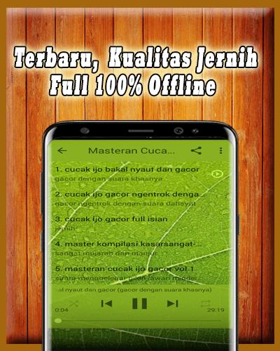 Download Suara Cucak Ijo Master : download, suara, cucak, master, Download, Cucak, Gacor, Offline, Android, STEPrimo.com