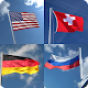 GUESS COUNTRY FLAGS 2020 for PC