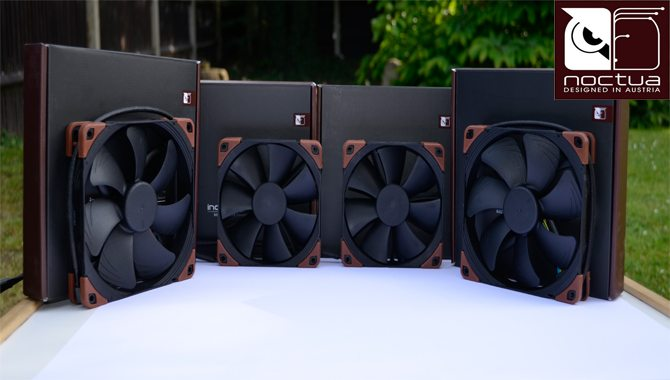 Noctua celebrates its 10-year anniversary