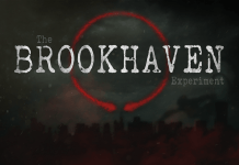 Brookhaven Experiment VR Game Review 1