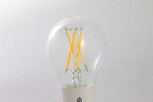 Profile View of Bulb