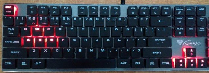 FPS mode: WASD, arrow keys and the Esc key are illuminated.