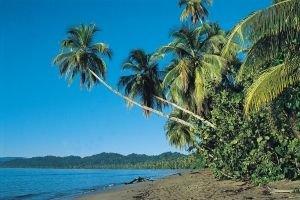 Playa Blanca (Cahuita)