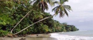 Playa Mona