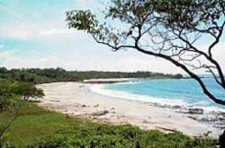 Playa Pitahaya