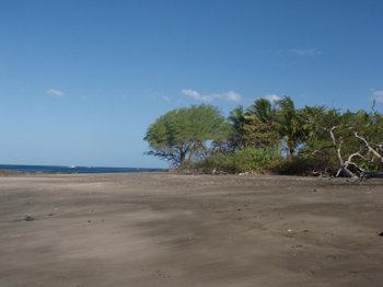 Playa Arbolito