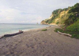 Playa Matapalo (Osa)