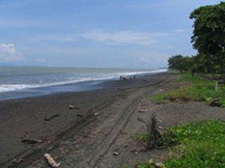 Playa Tárcoles