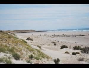 fotos playas doradas 18