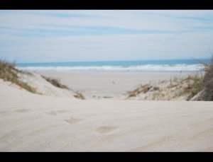 fotos playas doradas 17