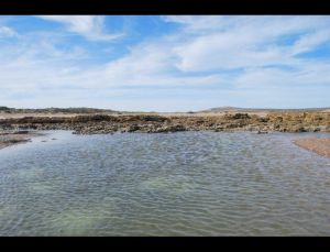 fotos playas doradas 11