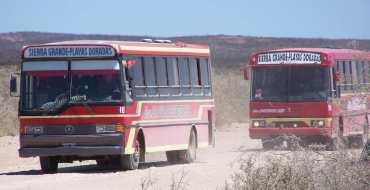 """Nuevos horarios de """"Doradas Bus"""""""
