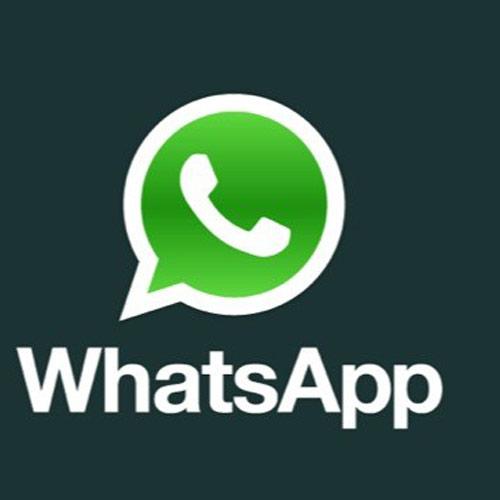 313061-whatsapp