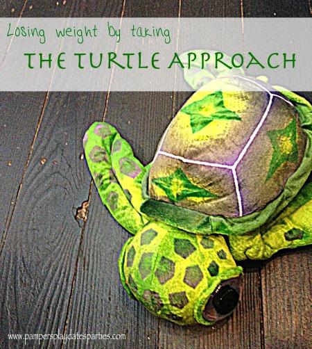 Turtle Approach