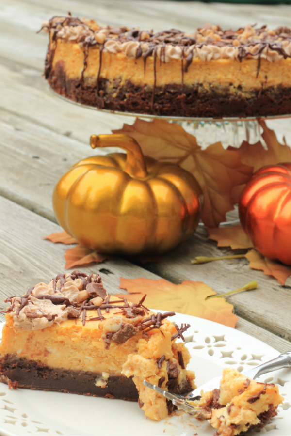 Pumpkin Cheesecake with Brownie Bottom from a Sprinkle of Joy.