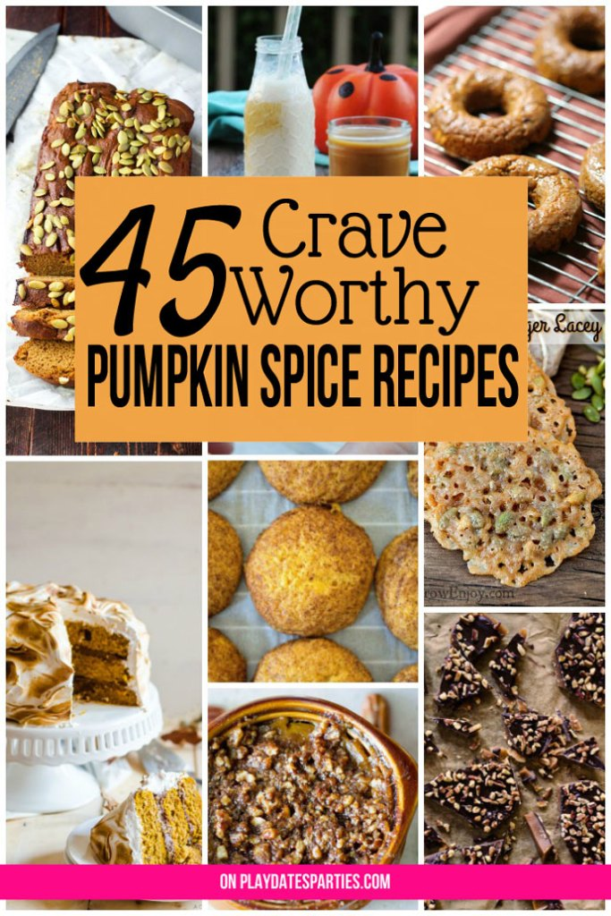 Whether you're looking to cook for a crowd, follow a vegan/gluten free/paleo diet, or just want to whip up something easy to satisfy a craving, you're going to love this list of 45 tasty and creative pumpkin spice recipes for every occasion!