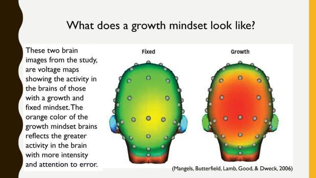 growth mindset par imagerie cérébrale