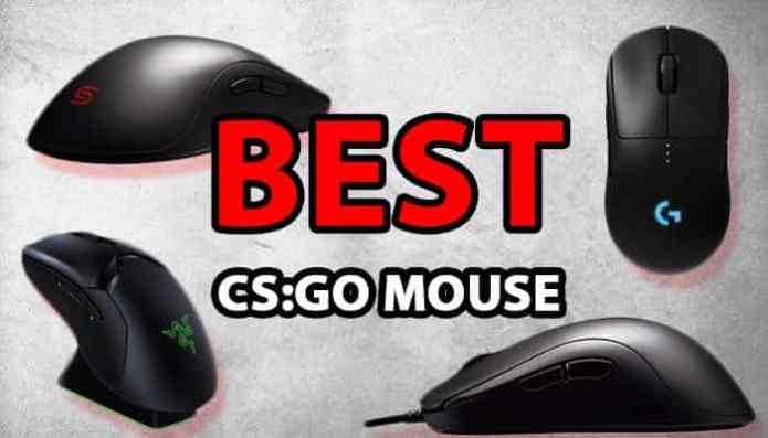 Best Mouse For CS GO : Essential Guide