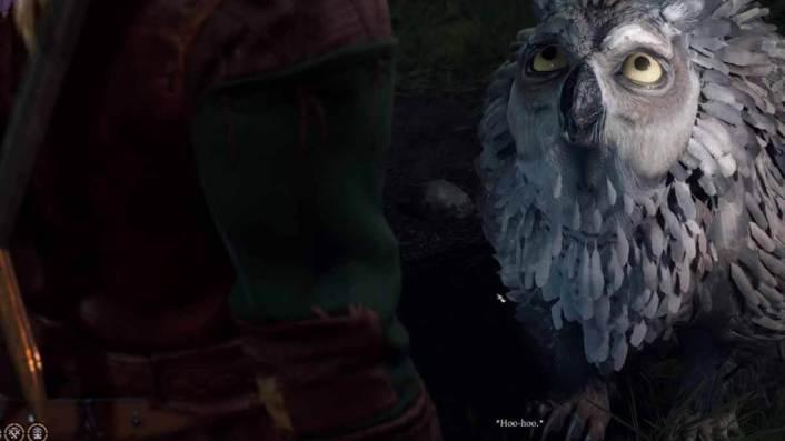 Baldur's Gate 3: Owlbear – How to Get Owlbear