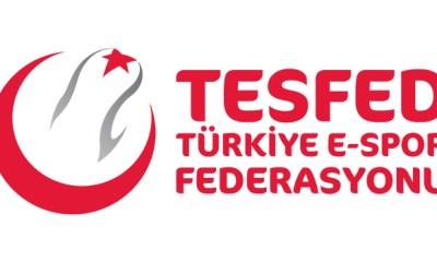 TESFED Türkiye Kupası PUBG Mobile finallerinde ilk gün tamamlandı!