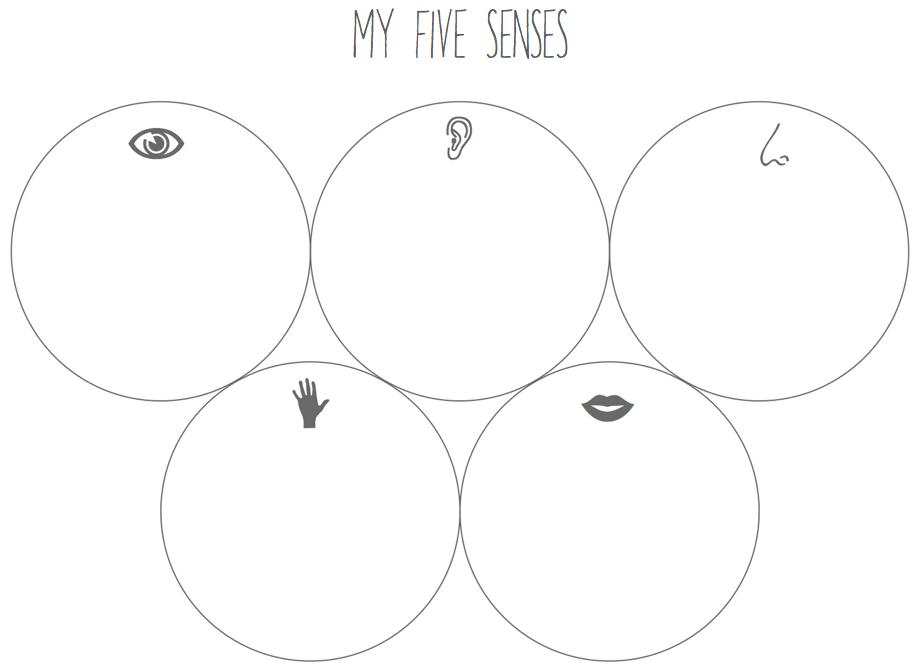 Sensorial Education: My Five Senses (+ printable