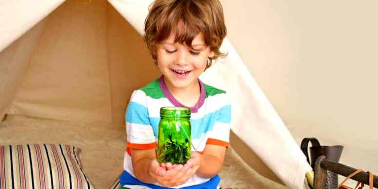 science activities for young kids