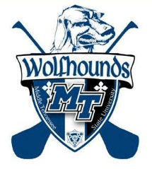 Middle Tennessee State University Hurling Club