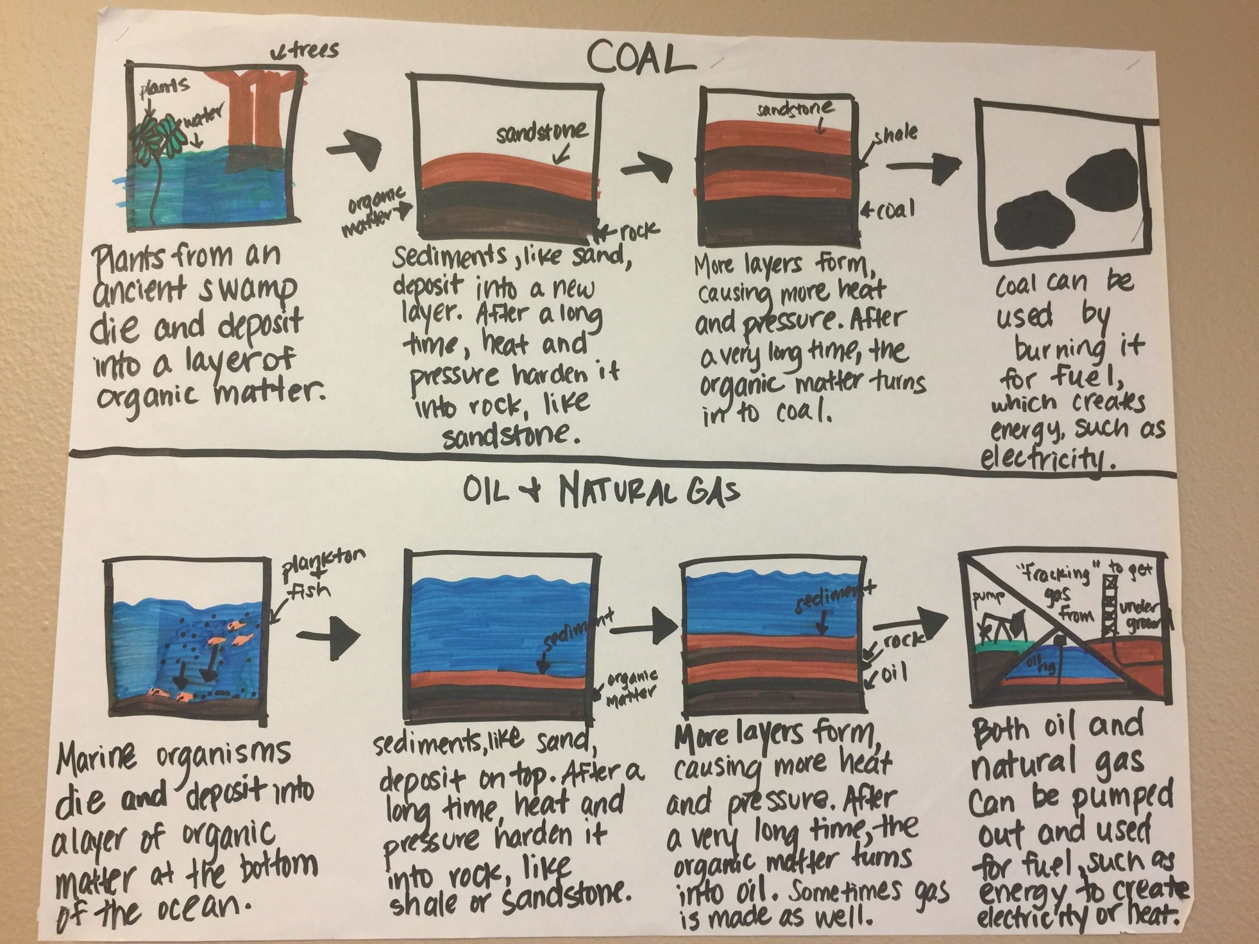 Fossil Fuels Worksheet Middle School