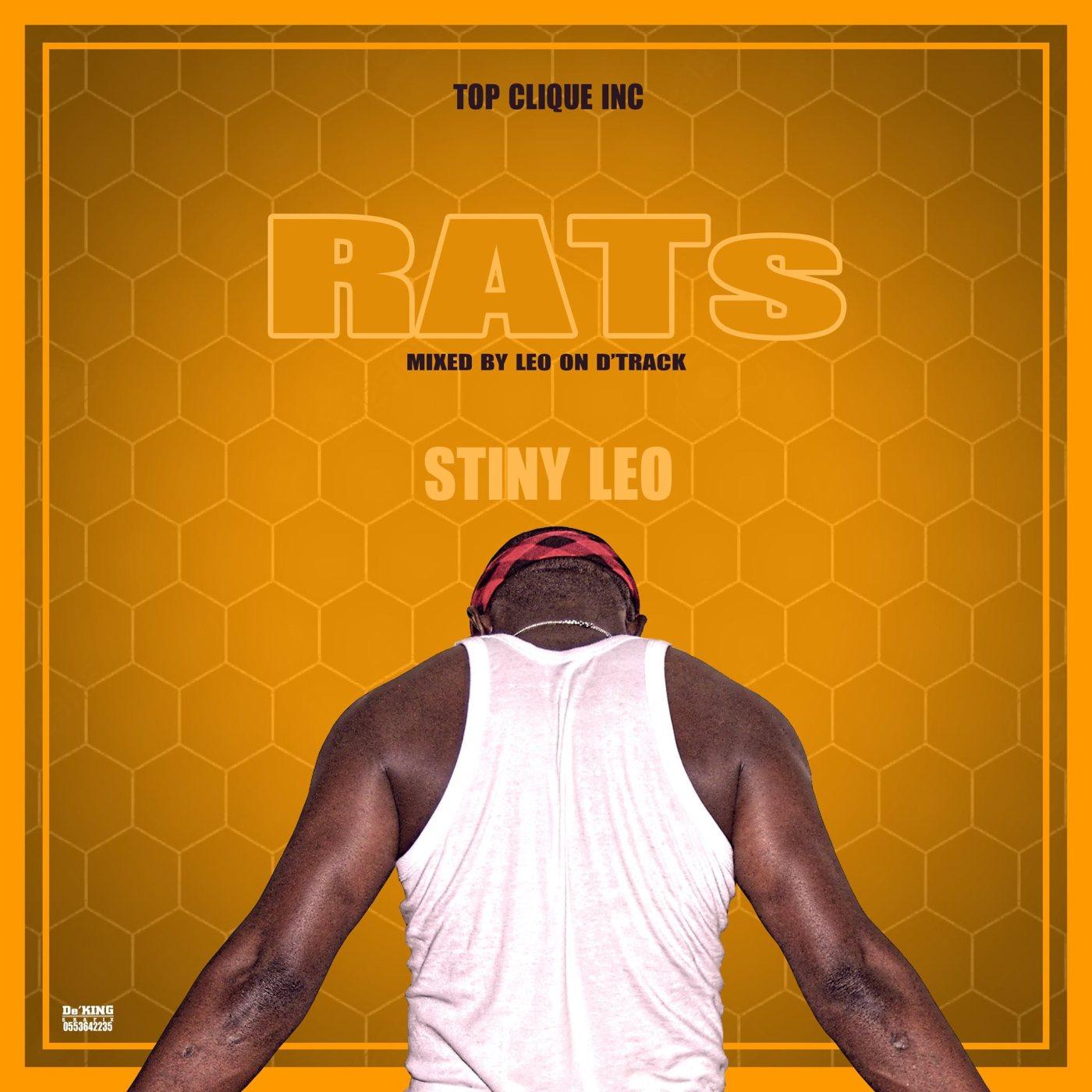 Stiny Leo - RATs