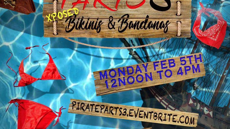Pirate Parts 3 Trinidad