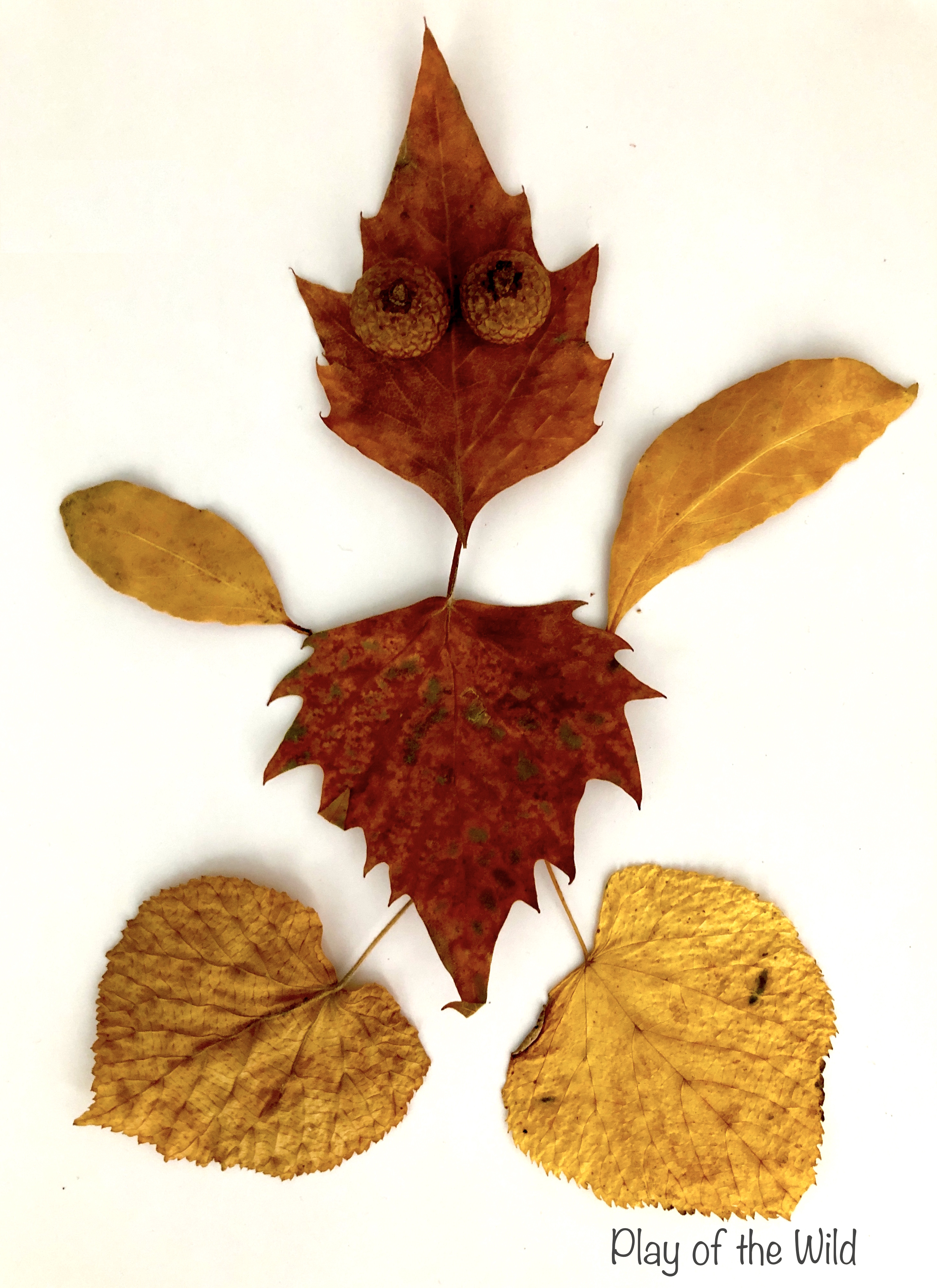 Leaf person. Leaf art.