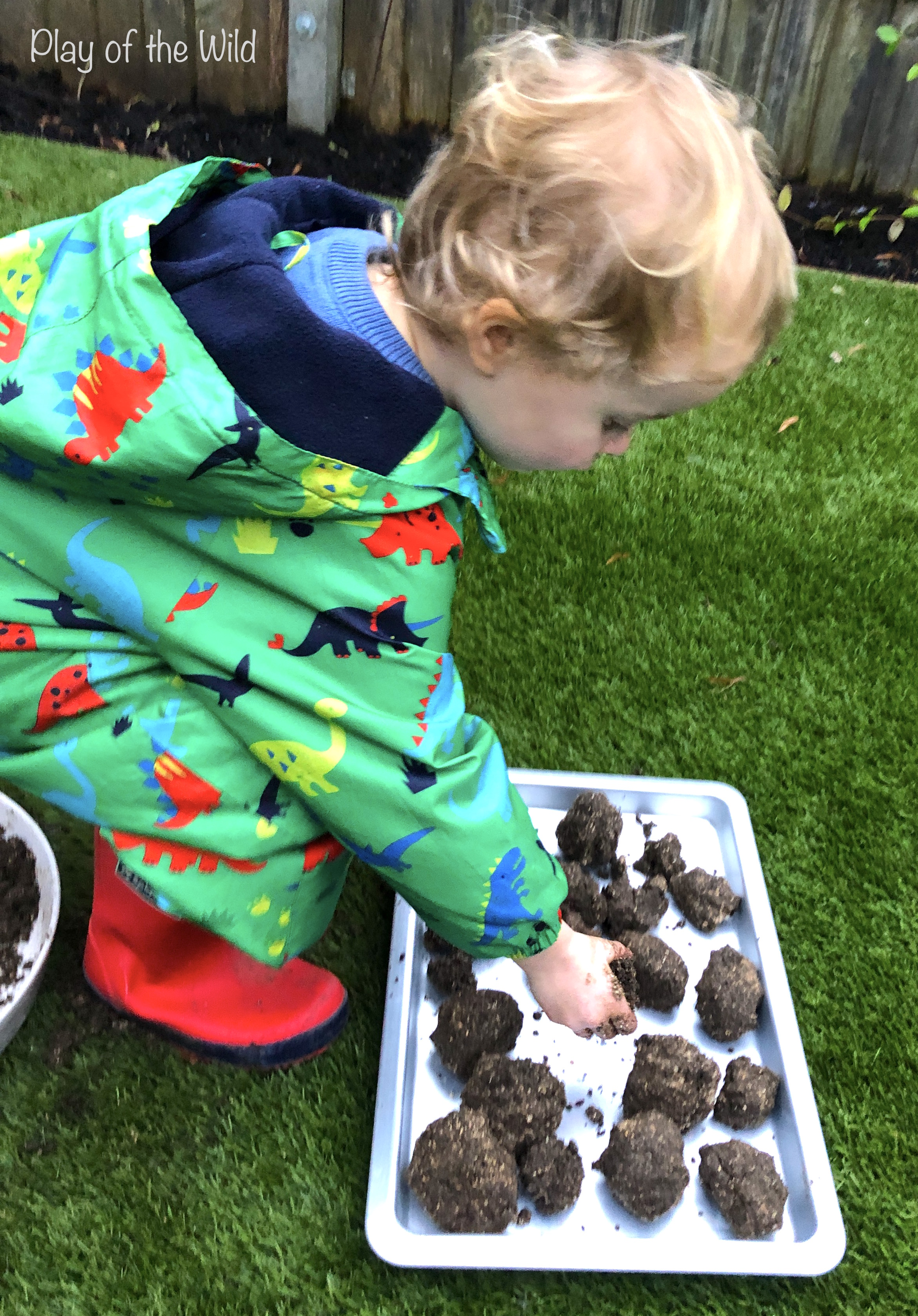 making seed bombs with