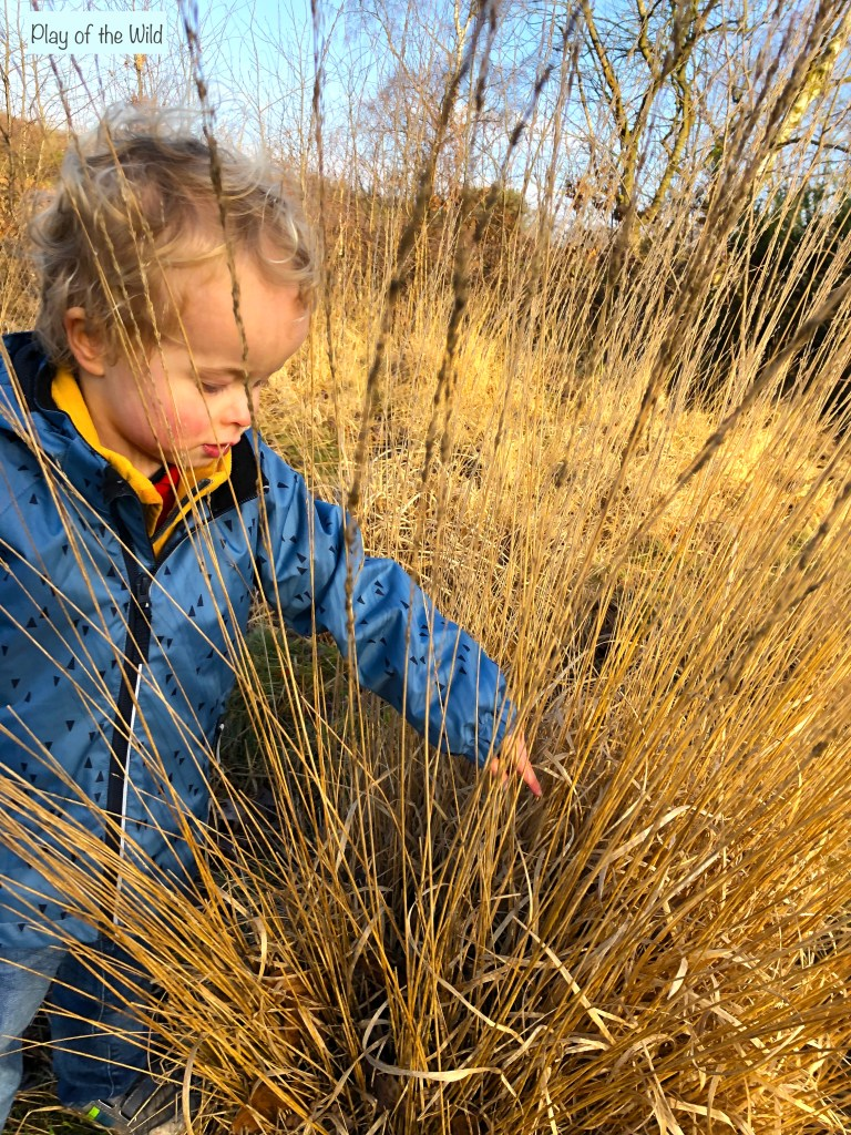 outdoor learning with children