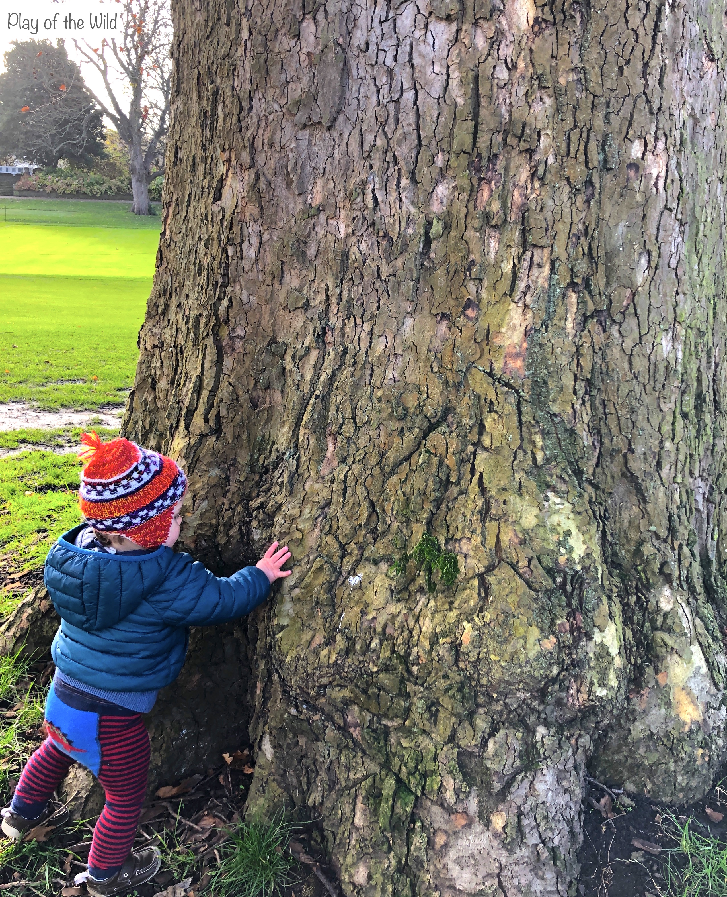 Learning outdoors with kids