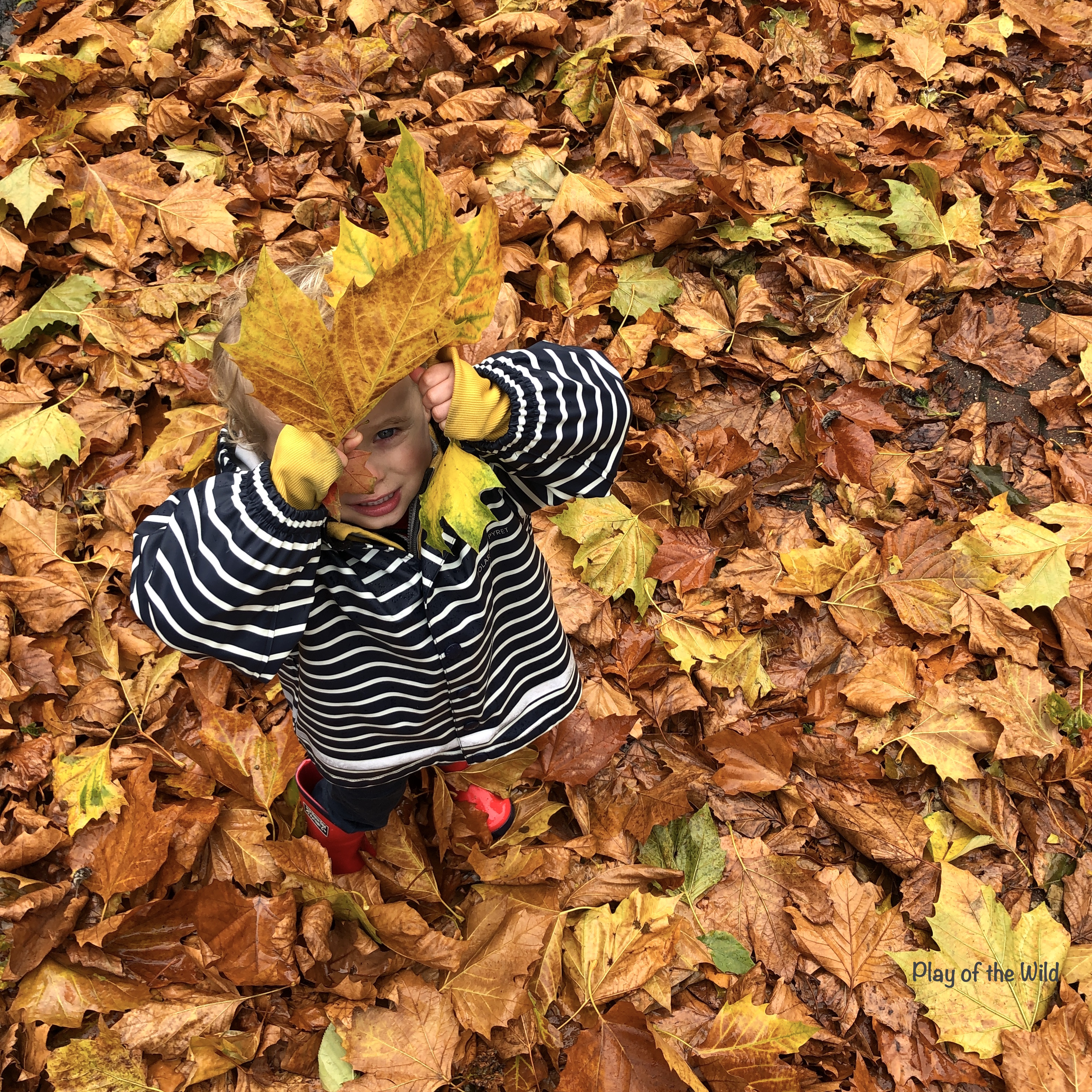 activities to take literacy outdoors