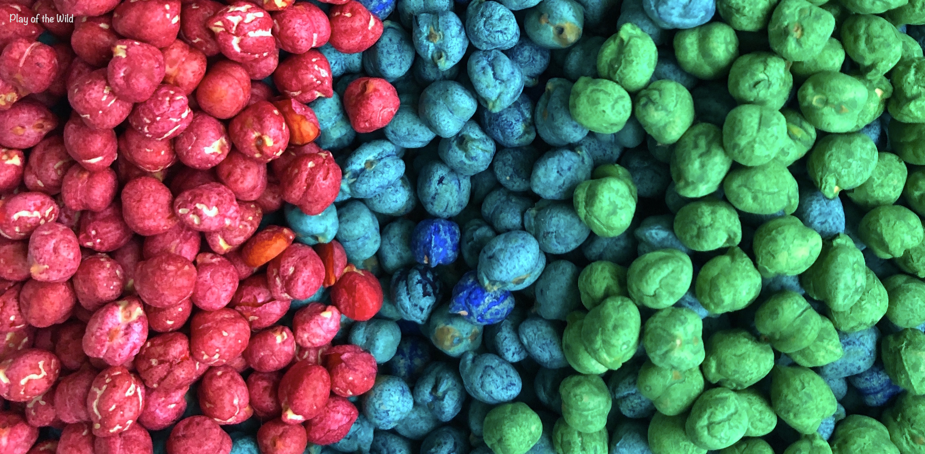 colored chickpeas for sensory bin play