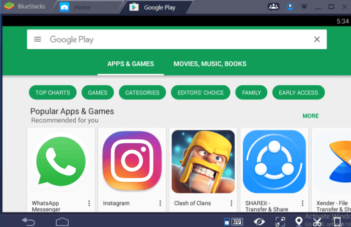Google Play Store for Windows using Bluestacks