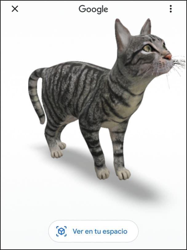gato realidad virtual android