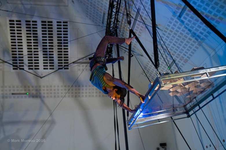 Depths of My Mind Scarabeus Aerial Theatre